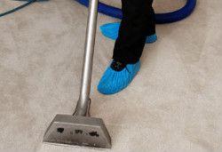 Carpet Cleaning Tottenham